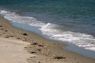 Photo: Jetties Beachin aarteita (liittyen Nancy Thayerin kirjaan Beachcombers)