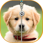 Puppy Zip Screen Lock Cute Icon