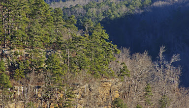Photo: Dismal Hollow looking towards The East Fork of the Little Buffalo