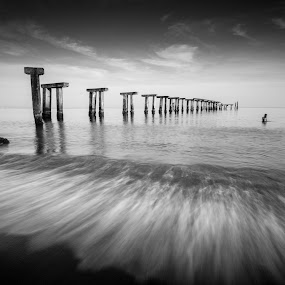 The Morning Dip by Raffy Nadayag - Black & White Landscapes (  )