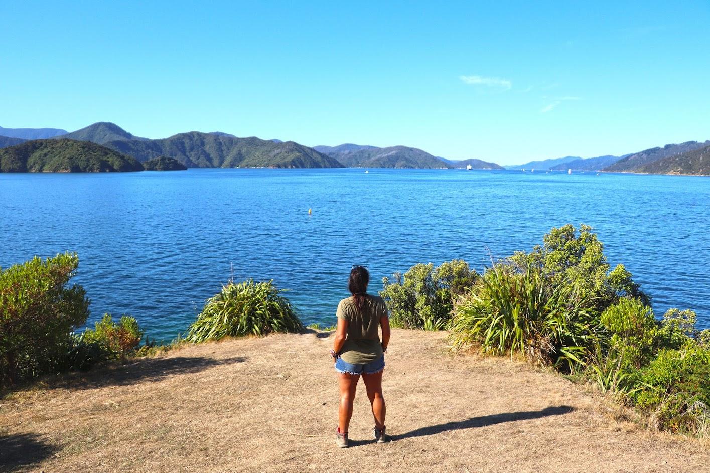 VISITAR PICTON, a porta de entrada dos Marlborough Sounds, na Ilha Sul da Nova Zelândia