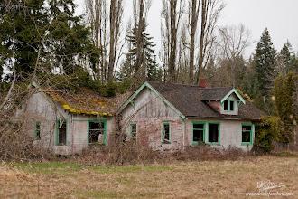 Photo: Vined Abandoned House