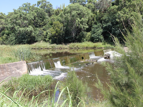 A long-established weir on the Macintyre River through the centre of Inverell provides a wide and placid stretch of river surrounded by landscaped parks.