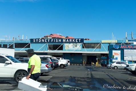 シドニー・フィッシュ・マーケット(Sydney Fish Market)