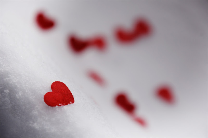 il mio cuore è per te di cristinababuder