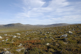 Kuva: Maasto oli mukavaa vaellettavaa, kiviä jonkin verran silman ilona