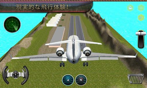 空港飛行機グランドスタッフ3D