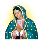 Novena Our Lady of Guadalupe