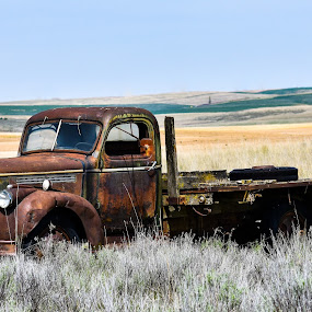1940's Flatbed Chevy Truck by Terry Oviatt - Transportation Automobiles