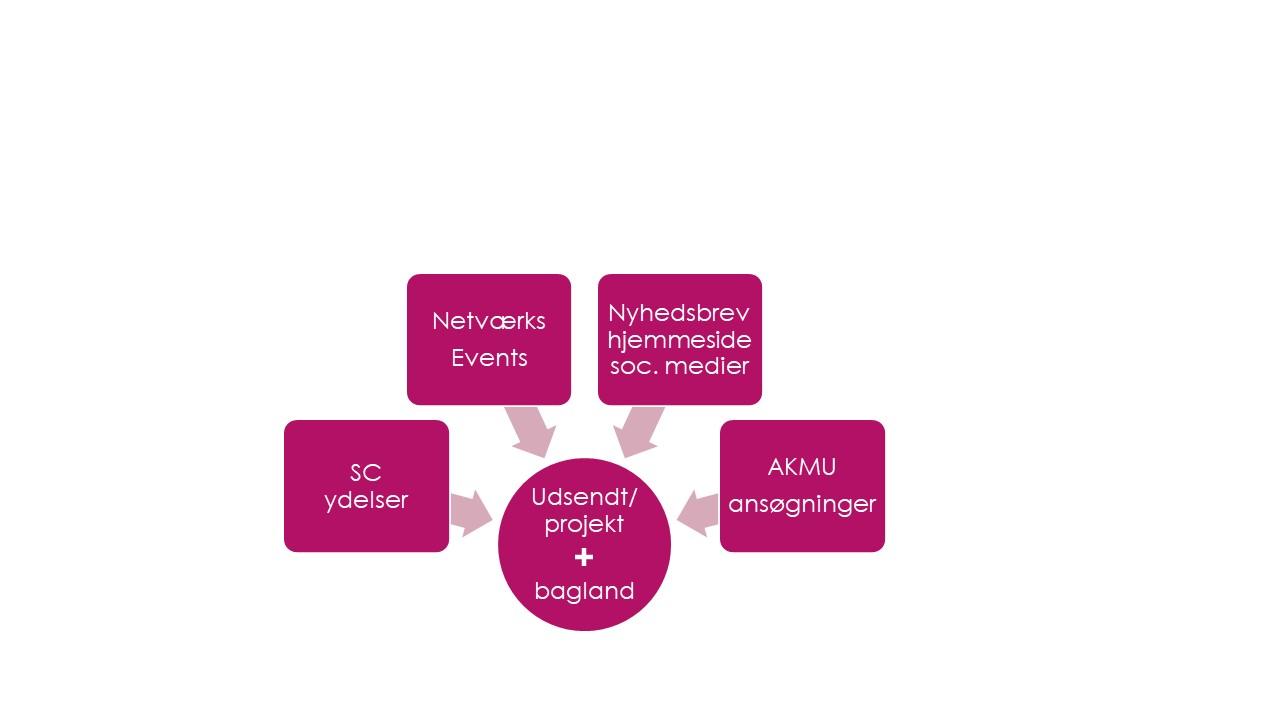 Forstå AKMs struktur2.jpg