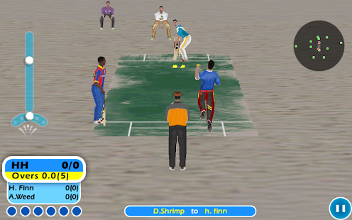Beach Cricket - screenshot thumbnail