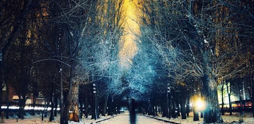 Descargar Snow Night City Live Hd Wallpaper Theme Para Pc