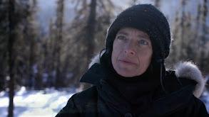 Arctic Discipline thumbnail