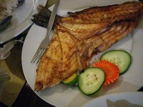 Photo: Managat Fish in Breakthrough