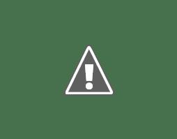 Photo: Boi vari colori e forme
