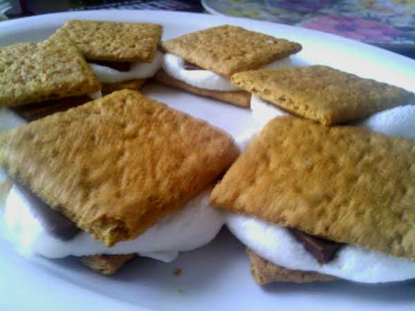No Fire No Ants Smores Recipe