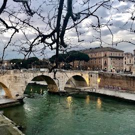 Ponte Cestio, Rome by Timothy Carney - Buildings & Architecture Bridges & Suspended Structures