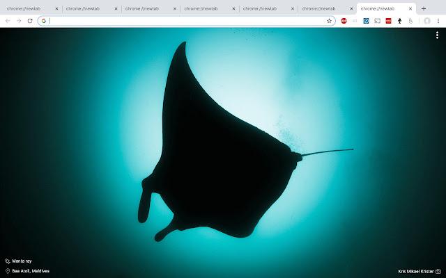 Diving photo tab