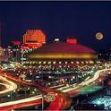 New Orleans Tourist icon