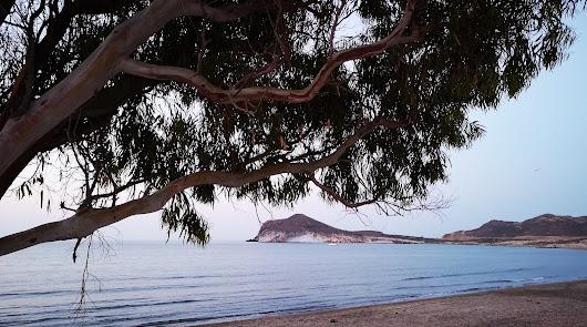 Almería, la provincia con las playas más recomendadas del país