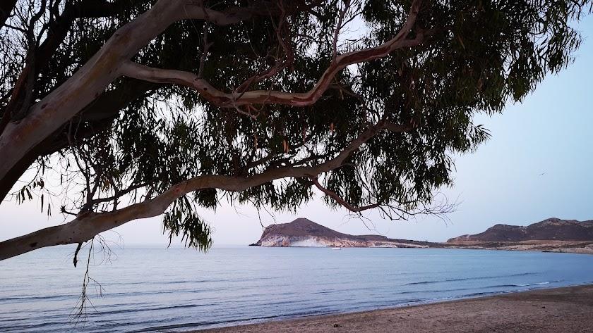 La espectacular playa de Genoveses. Foto de Marit Schmeling