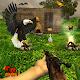 Realistic Wild Birds Hunting APK