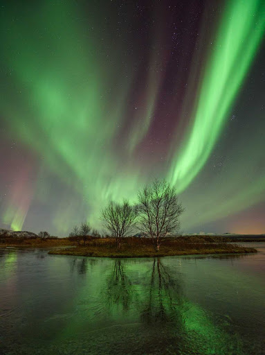 The Northern Lights await you in Iceland.