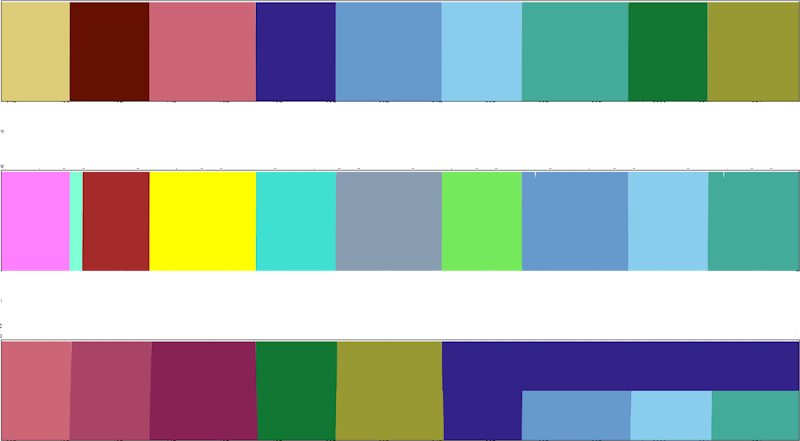 bars of color within rectangles