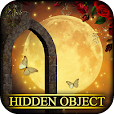 Hidden Object - Mystic Moonlight