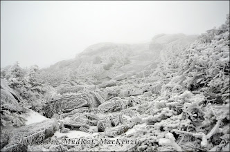 Photo: Looking up at the arete covered in rime ice.