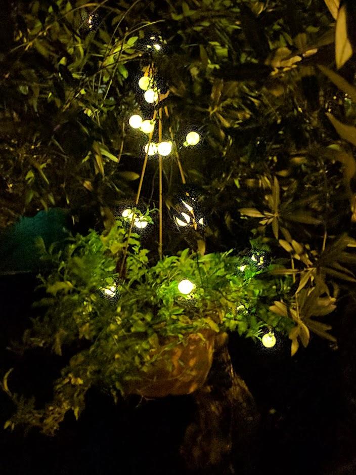 luci di natale esterno