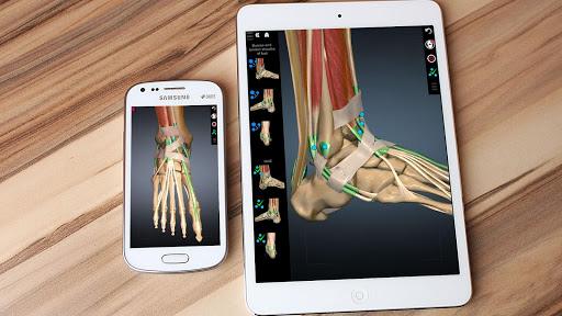 Anatomy Learning - 3D Atlas 2.1 screenshots 7