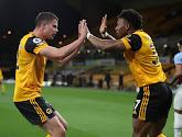 Les Wolves s'autoproclament champions d'Angleterre