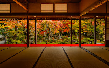 """Photo: This photo appeared in an article on my blog on Feb 3, 2013. この写真は2月3日ブログの記事に載りました。 """"Impossible Shot at Kyoto's Enkoji Temple: Garden *and* Garden-Viewing Room at the Height of Fall Colors, Devoid of People"""" http://regex.info/blog/2013-02-03/2198"""
