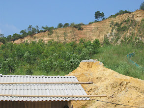 Photo: CHN-QU01  China - a quarry near Guangzhou, Guangdong Province under vetiver rehabilitation