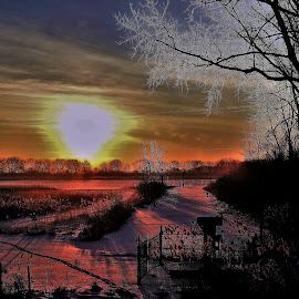 by Kathy Woods Booth - Landscapes Sunsets & Sunrises ( sunrise, shadows, winter, frosty, silhouettes, colorful, icy )