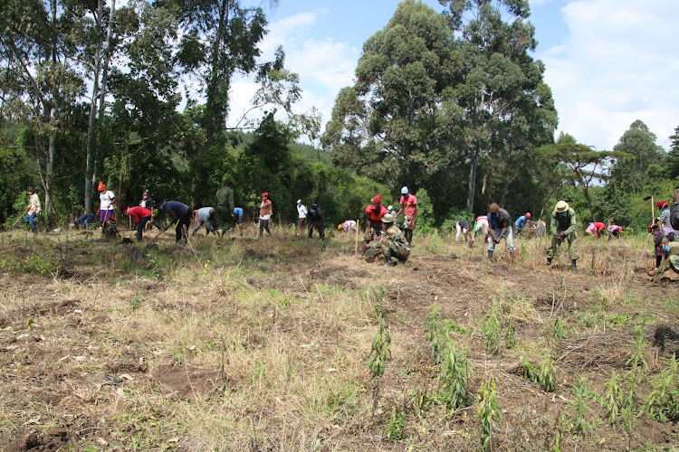 Dundori CFA takes part in a tree planting drive.