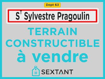 terrain à Saint-Sylvestre-Pragoulin (63)