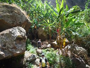 Photo: Rando pédestre vers la seule cascade de l'île