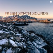 Fresh Synth Sounds