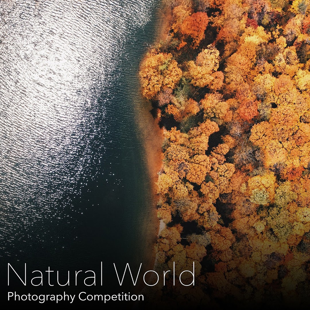 Natural World Photography Competition. Capture amazing photos of the natural world all around us from all over the world and submit to win amazing prizes.