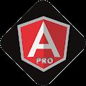 Learn AngularJS PRO icon
