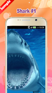 Shark Wallpaper - náhled
