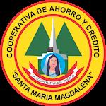 SMM Asistente icon