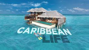 Caribbean Life thumbnail