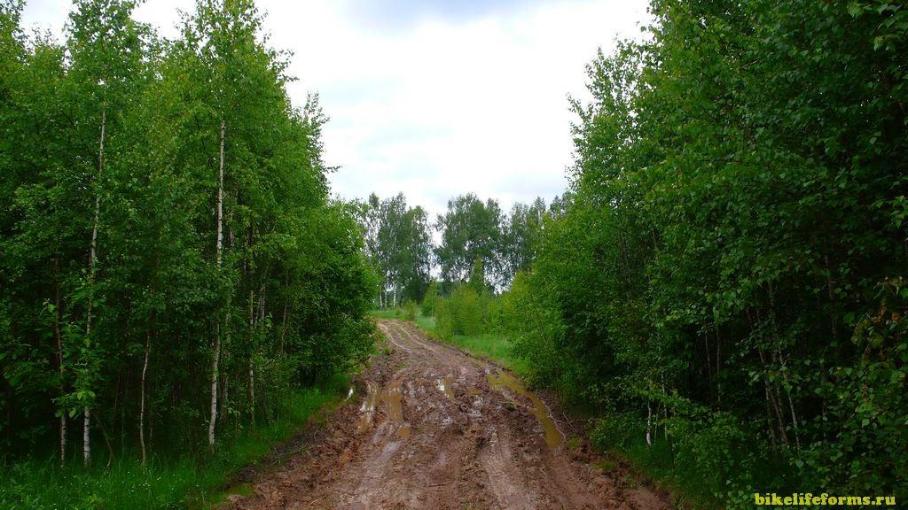 Старицкий район велопоход