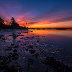 Sunrise Over the Bay by Carol Ward - Landscapes Sunsets & Sunrises ( water, clouds, sky, waterscape, maryland, berlin, sunrise, landscape, assateague, assateague national seashore )