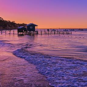 Coastal Sunset by Keith Walmsley - Landscapes Sunsets & Sunrises ( waves, sunset, australia, trees, pier, victoria, beach, landscape, coast )