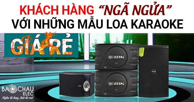 Khách hàng ngã ngửa với những mẫu loa karaoke giá rẻ