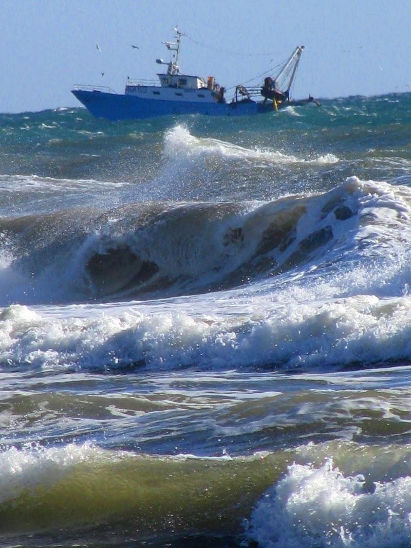Ahi serva Italia, di dolore ostello, nave sanza nocchiere in gran tempesta... di Elisabetta Di Girolamo